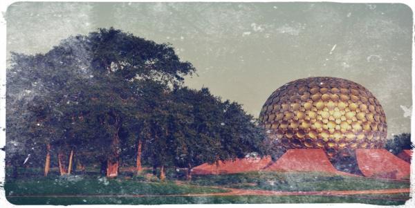 Banyanträdet vid yogatemplet Matrimandir, där underverket spelades in.